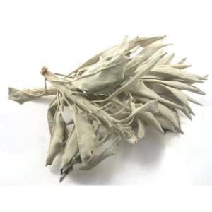 biala-szalwia-25g