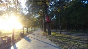 park linowy paiski irn